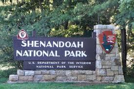 shenandoahnp